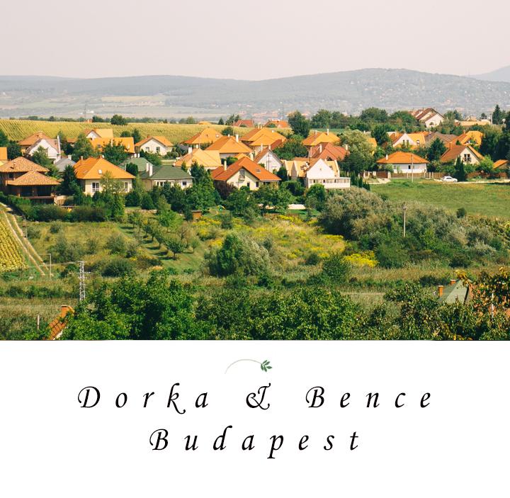 Dorka & Bence | Wedding photographer Etyek